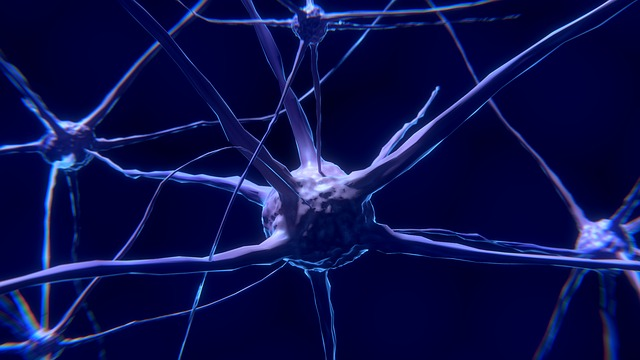 Connected Neurons